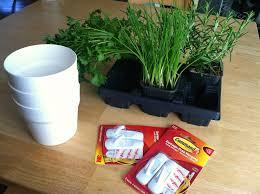 Kitchen Herb Pots Harvesting Hart Hanging Herb Planters