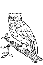 Theme Forest Animals Coloring Pages Juf Milou Forest Animals Coloring Pages