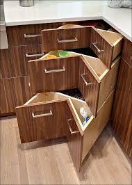 Cabinet Drawer Inserts Kitchen Kitchen Cabinet Plate Rack Under Shelf Drawer Kitchen