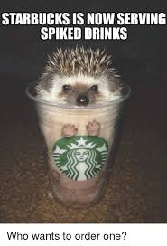 Starbucks Meme - starbucks is now serving spiked drinks who wants to order one