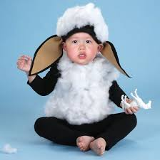 Halloween Sheep Costume Ba Ba Black Sheep Halloween Costume