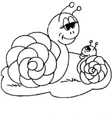 coloriage escargot les beaux dessins de nature à imprimer et