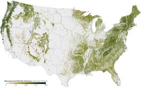 map usa all states map of all the trees in the united states the sue