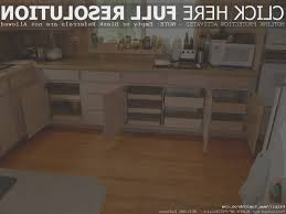 kitchen view kitchen cabinets organizer home design very nice