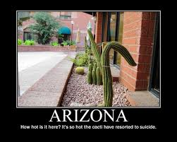 Arizona Memes - summer in arizona meanderings
