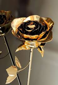 Gold Rose Rose Gold Picmia