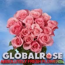 global roses global globalroses
