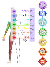 sacral chakra location warning signs your chakras are out of balance the event chronicle