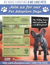 the sofa kings the sofa company pet adoption days u2013 the pet adoption center of