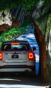 Chandelier Drive Through Tree Drive Through The Trees Literally On This San Francisco Escape