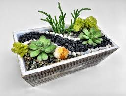 Succulent Planter by Distressed Wood Succulent Planter Terrarium With Citrine Crystal