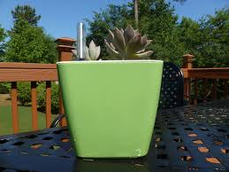 self watering plant pot rain series small u2013 guylanta