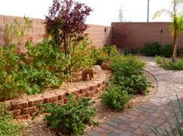 Desert Landscape Ideas For Backyards Best 25 Desert Landscaping Backyard Ideas On Pinterest Desert