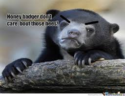Meme Honey Badger - honey badger don t care by hotfudge meme center