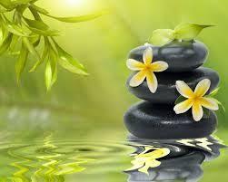 imagenes zen gratis mejores 149 imágenes de zen en pinterest espiritualidad jardines
