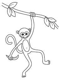 slim monkey coloring slim monkey coloring jpg u2013 color