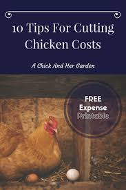 What To Feed Backyard Chickens by 1079 Best Chickens For Emma Images On Pinterest