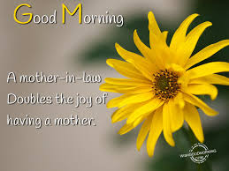 mother in law daughter in law relationship good morning wishes for mother in law good morning pictures