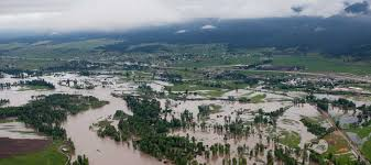 make america flood again u2026and again u2026and again u2026 american rivers