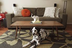 animal leg side table danish modern coffee table elegance beautiful and stylish cole