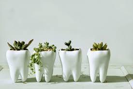 cute plant 50 unique pots planters you can buy right now