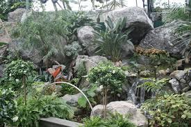 waterfall camera waterfalls green rocks garden day pyramids