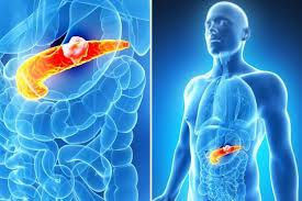 bauchspeicheldrüsenschwäche die bauchspeicheldrüsenschwäche immer wieder blähungen