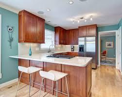 kitchen paint color houzz