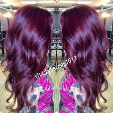 best color for hair if over 60 9 best hair colors images on pinterest hair colour hair colours