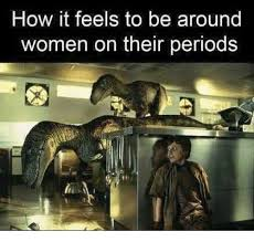 how it feels to be around women on their periods period meme on