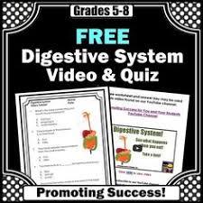 food digestion worksheets digestive system worksheets