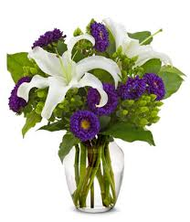 purple lillies blooming at from you flowers