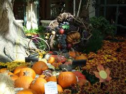 Halloween And Fall Decorations - fall halloween decorations picture of conservatory u0026 botanical
