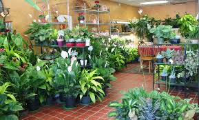 pittsburgh florists blooms in the district three florists flourish in a