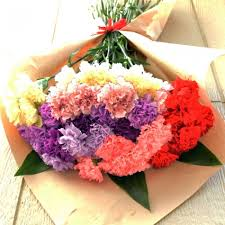 cheapest flowers cheap carnation flower bouquet for graduation cheapest flower
