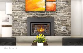 Gas Inserts For Fireplaces by Gas Inserts Benefit Wholesale Napoleon Fireplaces Wv Ky Oh