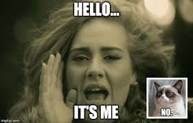 Meme Generator Gif - adele hello meme generator imgflip