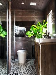 Rustic Bathroom Decorating Ideas Rustic Bathroom Decorating Ideas White Porcelain Toilet Decorative