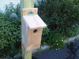 whimsical house plans life as a healthcare cio building birdhouses