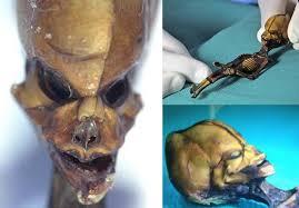 Ohio traveling salesman images Scary stuff comp 18 morbid jpg