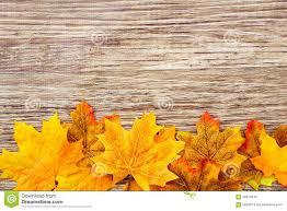 autumn thanksgiving background stock photo image 58522040