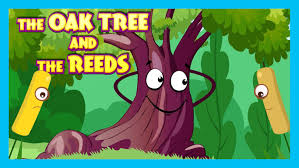 the oak tree and the reeds story moral story for hut