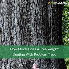 how much does a tree weigh dealing with problem trees nov 2017