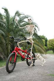 halloween decorations skeleton 214 best halloween skeletons images on pinterest halloween stuff