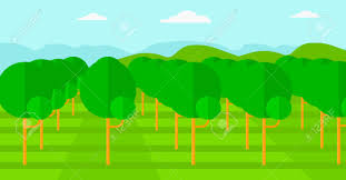 background of garden with fruit trees vector flat design