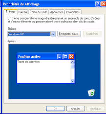 theme bureau windows enabling xp themes on windows server 2003