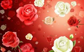 flower of rose red walls inc net wallpaper for waplag excerpt idolza