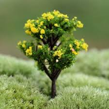 compare prices on garden plants and trees shopping