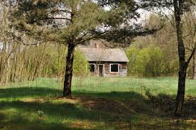 free images tree farm meadow home cottage ranch abandoned