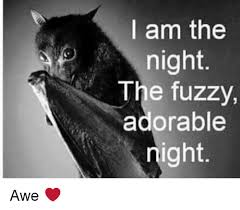 Awe Meme - i am the night the fuzzy adorable night awe meme on me me